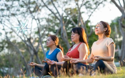 Inspirations & Reflections on the Meditation Challenge
